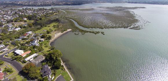 Te Atatu Peninsula aerial photo